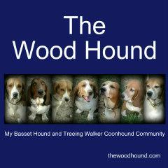 Meet The Hounds